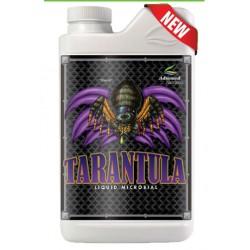 comprar-tarantula-davanced-seeds