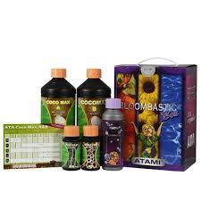 Bloombastic box Ata-Coco