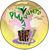PlantayPunto